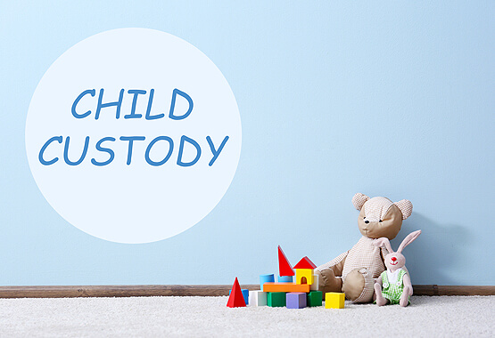 toys sitting on carpet in front of blue wall with sign saying child custody