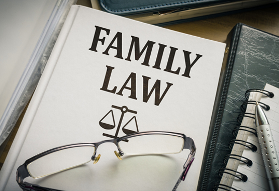 book about family law